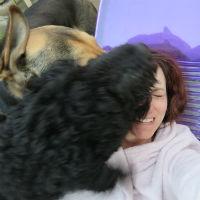 dog face2_200