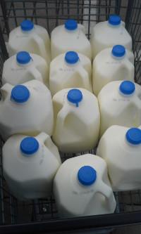 milk_long200